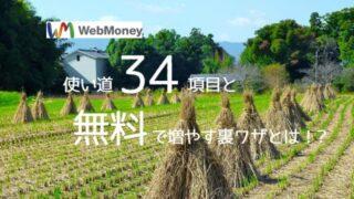 【厳選】WebMoneyの使い道34項目&無料で稼ぐ裏ワザを大公開!