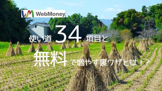 WebMoneyの使い道34項目